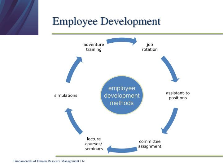 employee developement and training fearless freddy fuego case study As the title suggests, aid must now be delivered differently here, case study authors consider the results of aid in their own countries, highlighting field-based lessons on how aid works on the ground, while focusing on problems in current aid delivery and on promising approaches to resolving these problems  training and development.