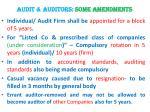 audit auditors some amendments