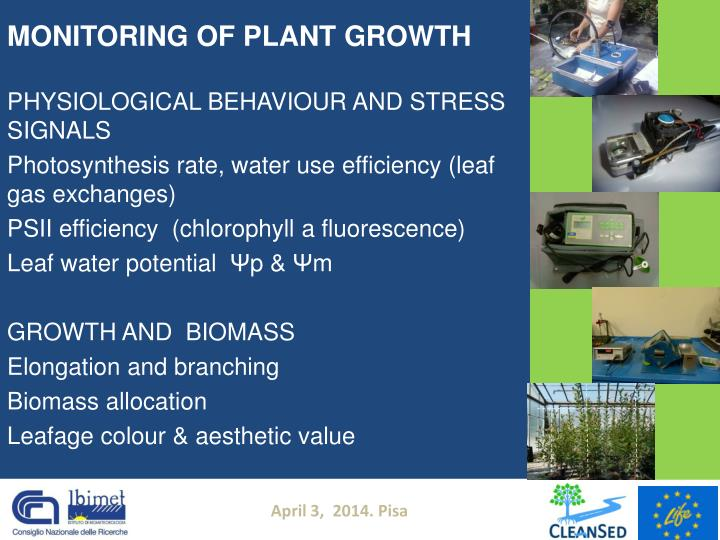 MONITORING OF PLANT GROWTH