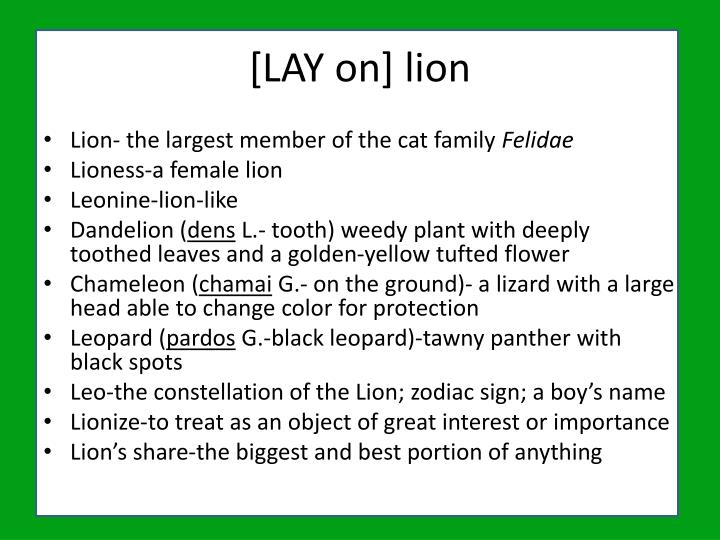 [LAY on] lion
