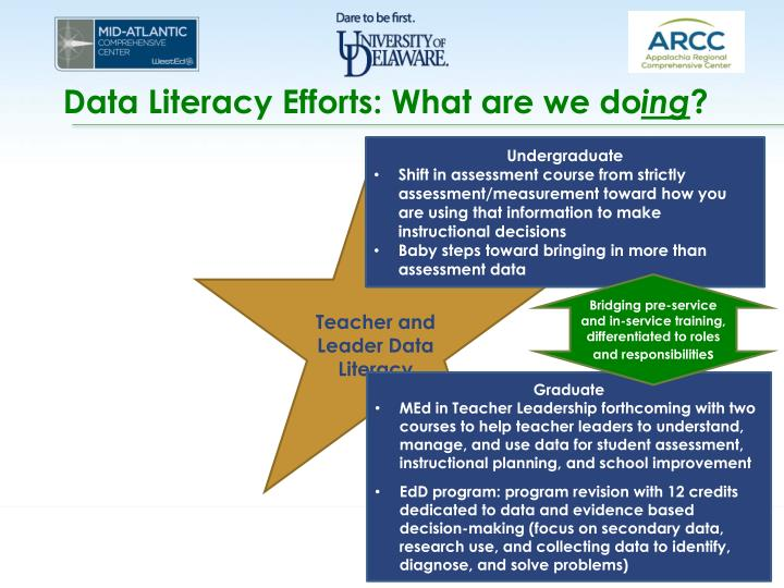 Data Literacy Efforts: What are we do