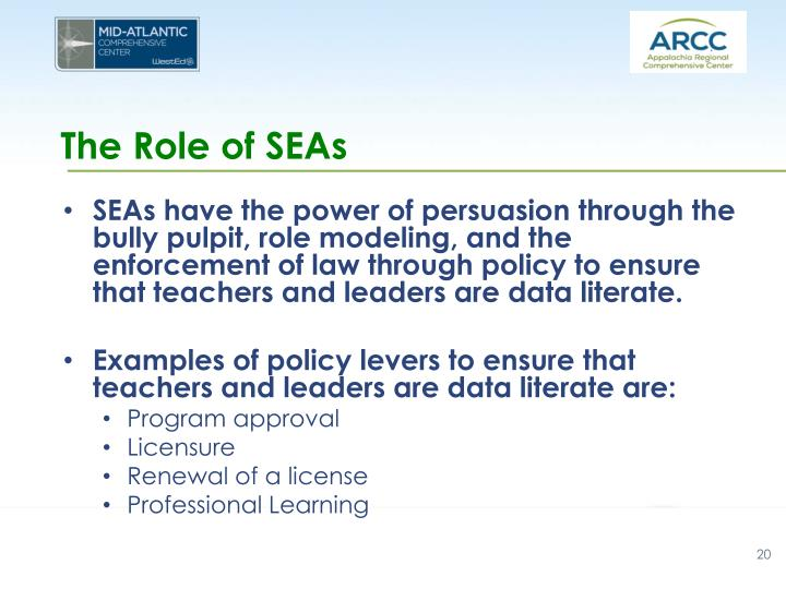 The Role of SEAs
