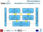 work breakdown atmosphere and ecosystem strands