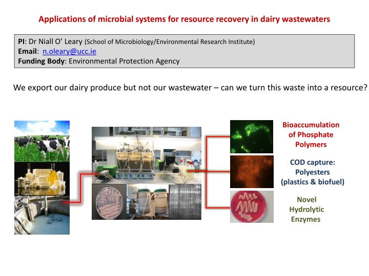 Applications of microbial systems for resource recovery in dairy wastewaters
