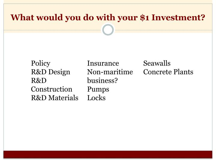 What would you do with your $1 Investment?