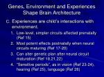 genes environment and experiences shape brain architecture1