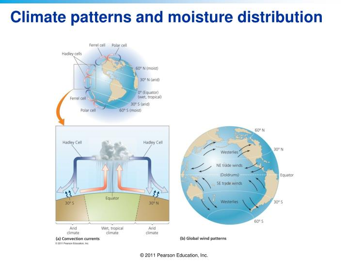 Climate patterns and moisture distribution