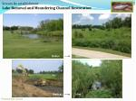 stream re establishment lake removal and meandering channel restoration