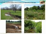 stream re establishment sinuosity and floodplain restoration on channelized stream