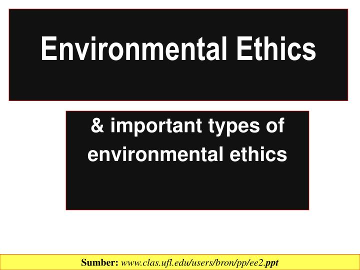 environmental ethics n.