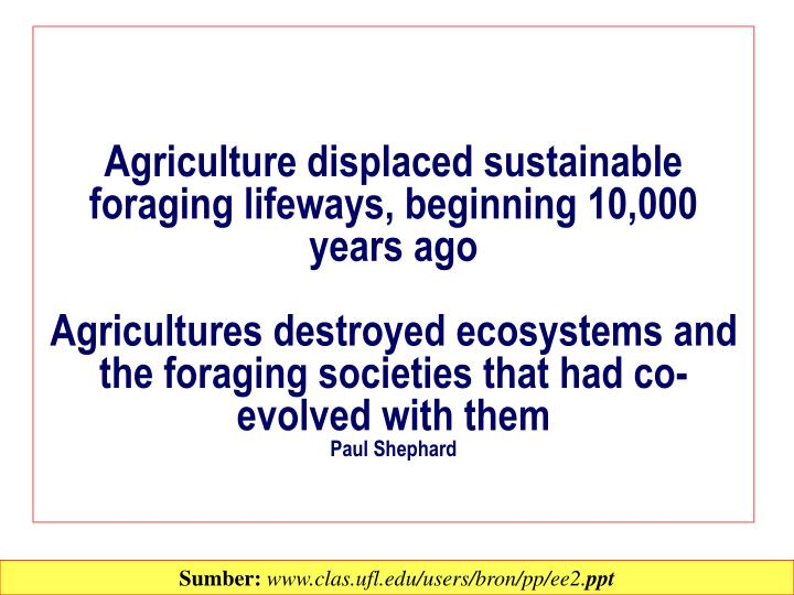 Agriculture displaced sustainable foraging