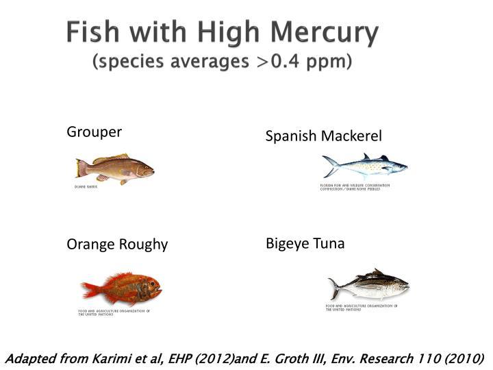 Fish with High Mercury