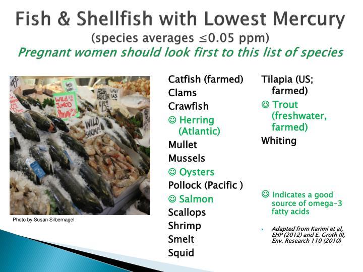 Fish & Shellfish with Lowest Mercury