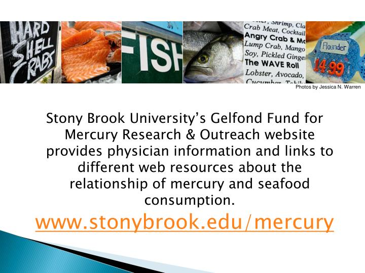 Stony Brook University's Gelfond Fund for Mercury Research & Outreach website provides physician information and links to different web resources about the relationship of mercury and seafood consumption.