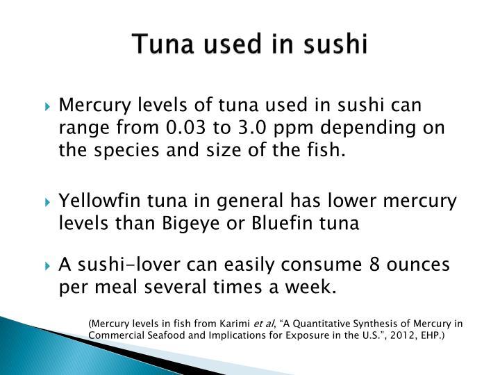 Tuna used in sushi