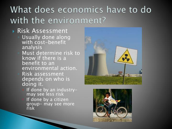 What does economics have to do with the environment?