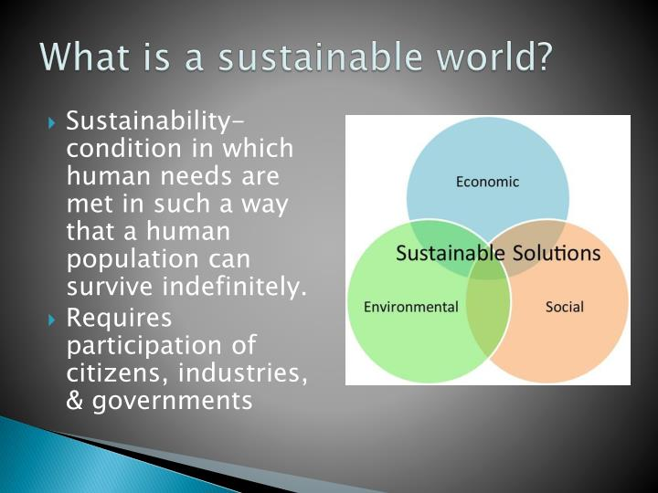 What is a sustainable world?