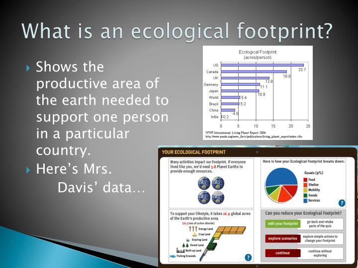 What is an ecological footprint?