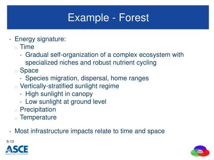 Example - Forest