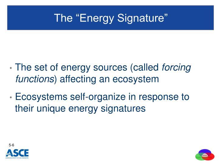 "The ""Energy Signature"""