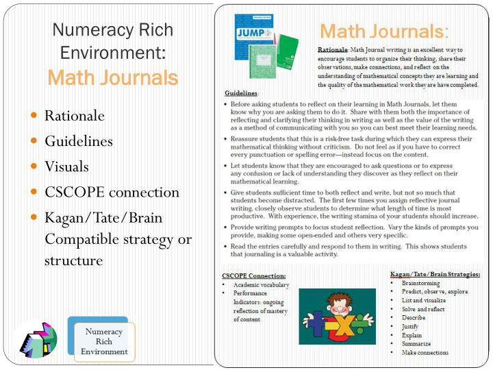 Numeracy Rich Environment:
