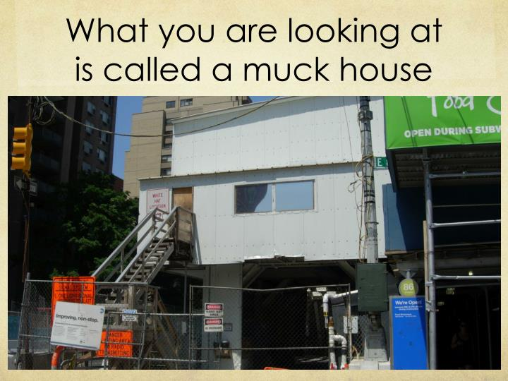 What you are looking at is called a muck house