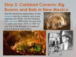 stop 5 carlsbad caverns big rooms and bats in new mexico