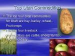 top utah commodities