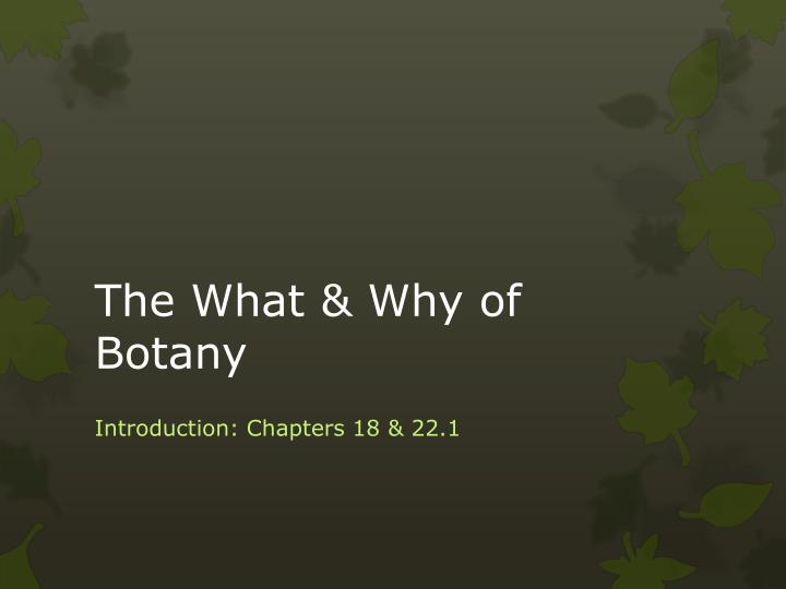 the what why of botany n.