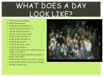 what does a day look like