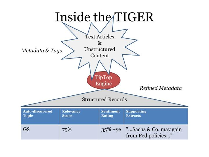 Inside the TIGER