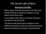 the secret life of bees2
