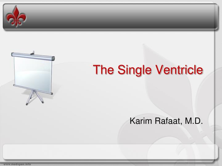 the single ventricle n.