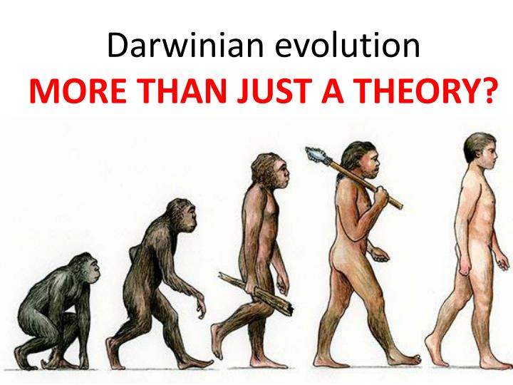 the two main points of darwins theory of evolution