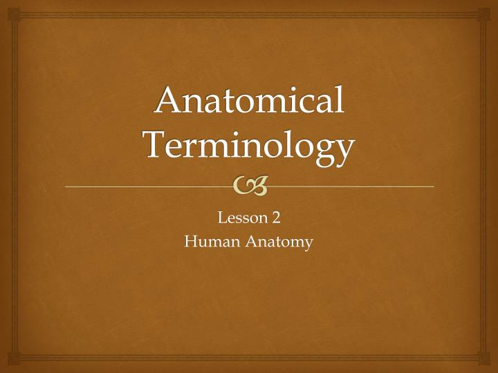 Ppt Anatomical Terminology Powerpoint Presentation Id1546441