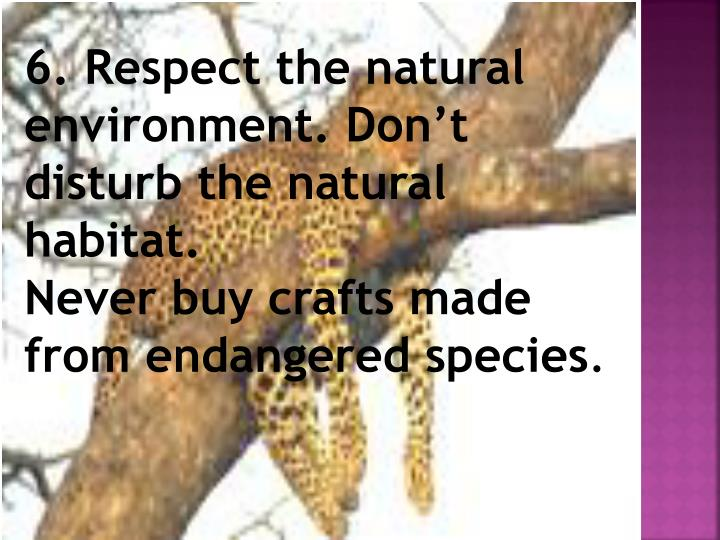6. Respect the natural environment. Don't disturb the natural habitat.