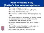 pace of game play batter s box rule exceptions