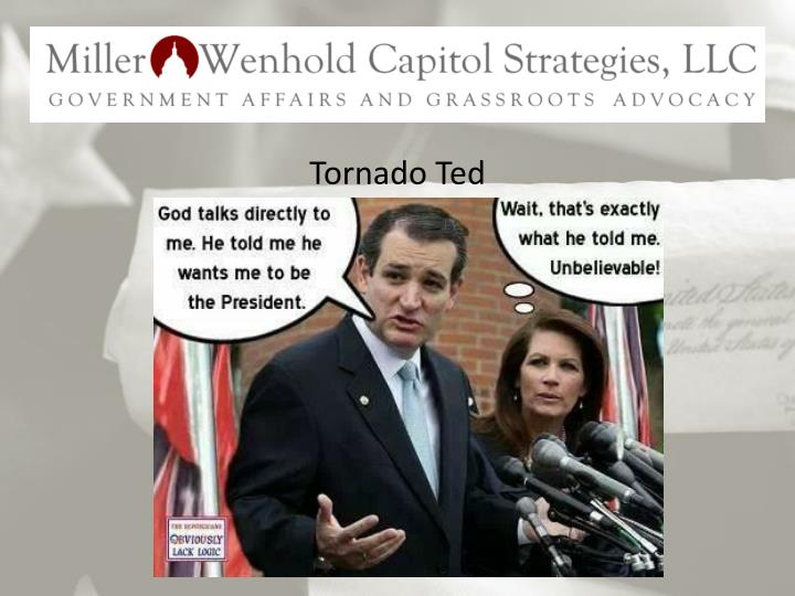 Tornado Ted