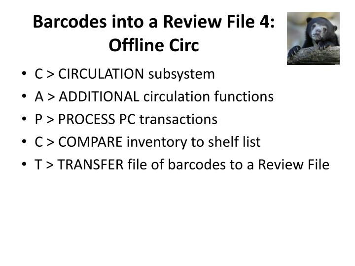 Barcodes into a Review File 4: