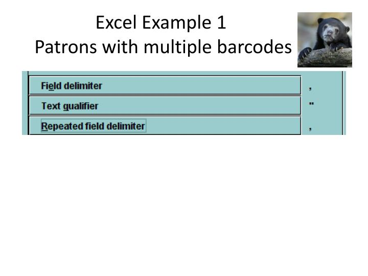 Excel Example 1