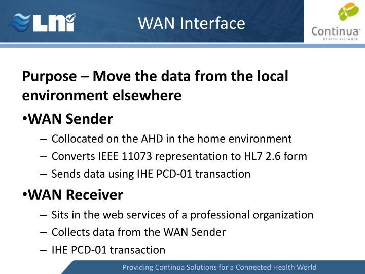 WAN Interface
