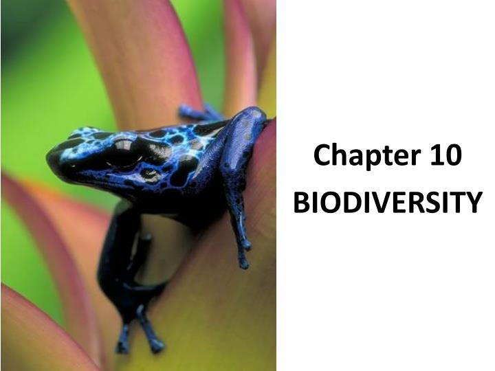 biodiversity ch 35 Chapter 47: conservation of biodiversity in this chapter: textbook resources biology prep writing lab reports and papers  home   chapter 47 science.