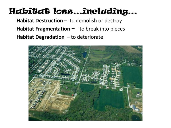 Habitat loss…including…