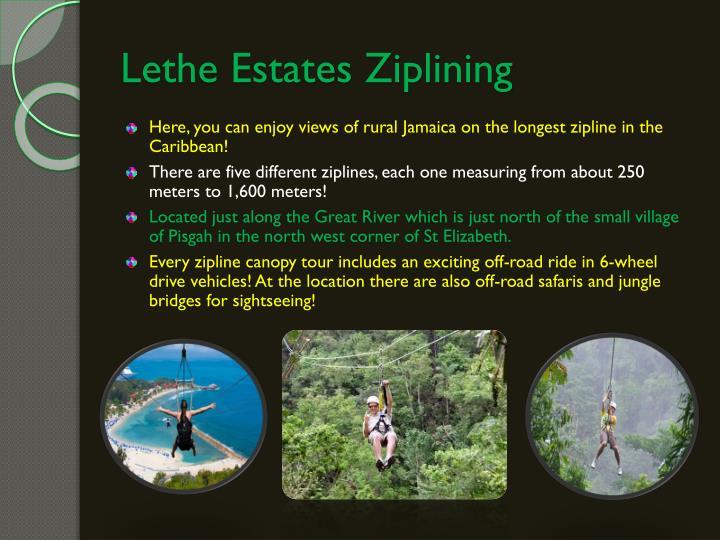 Lethe Estates Ziplining
