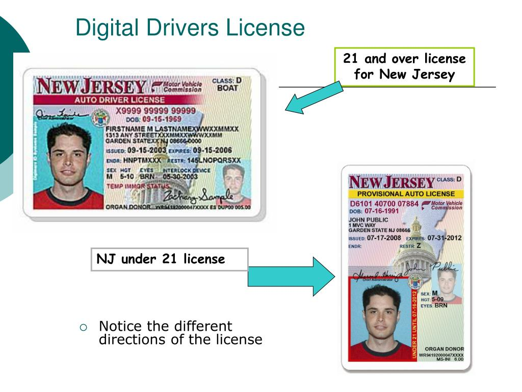 report stolen drivers license nj