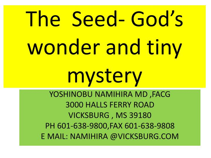 the seed god s wonder and tiny mystery n.