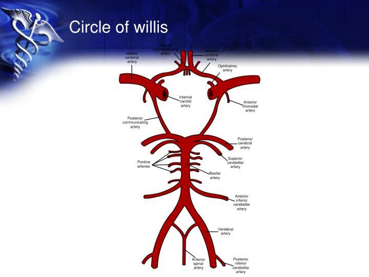 Circle of