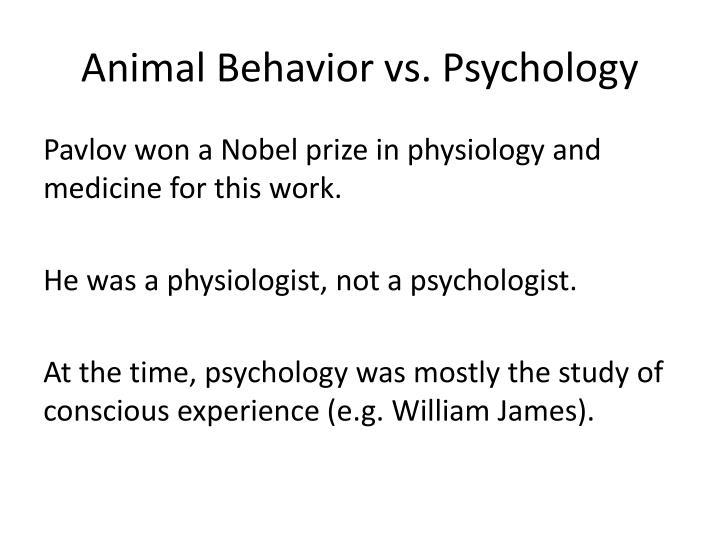 Animal Behavior vs. Psychology