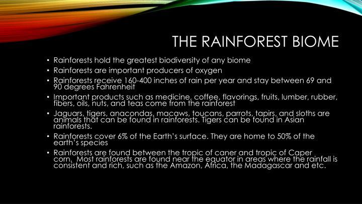 The rainforest biom e