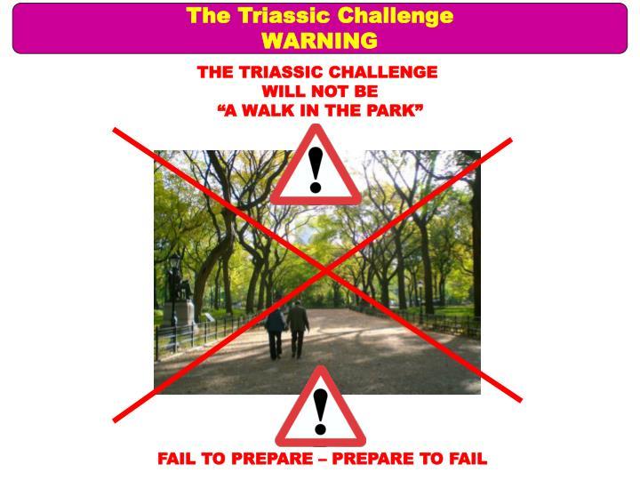 The Triassic Challenge